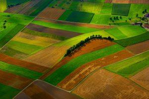 Riscoperta territorialità e nuovi modelli di business
